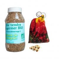 Blé tendre à germer BIO - Kit démarrage pour 2 à 3 poules