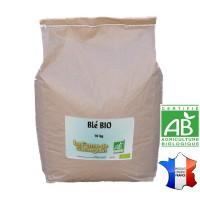 Blé BIO - 10 kg