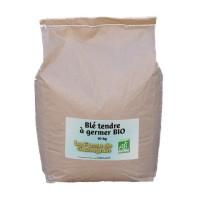Blé tendre à germer BIO - 10 kg